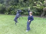Jacob and Panda playing ball